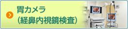 胃カメラ(経鼻内視鏡検査)